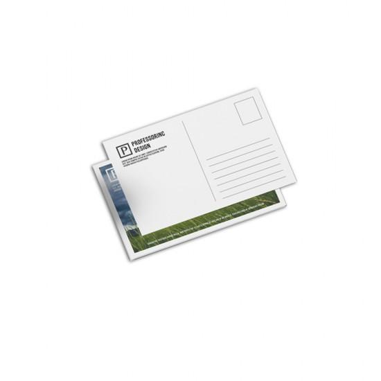 Postcard - 10x21